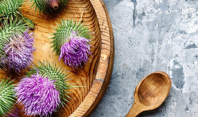 Pegasti badelj deluje kot močan antioksidant